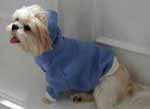 dog sweatshirts
